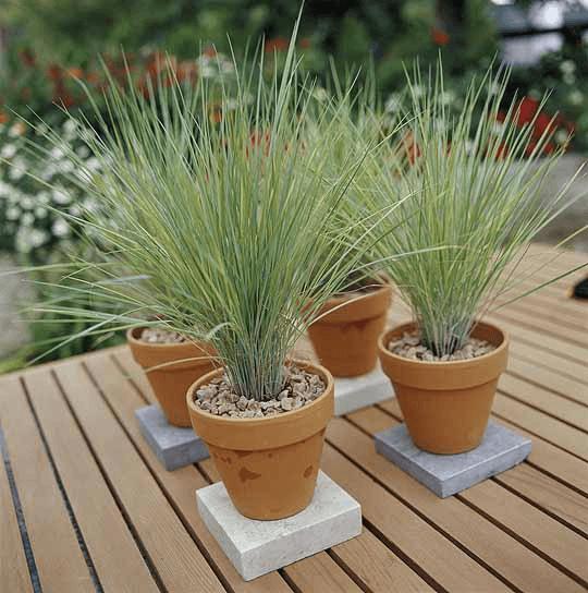 vasos decorativo para jardinagem