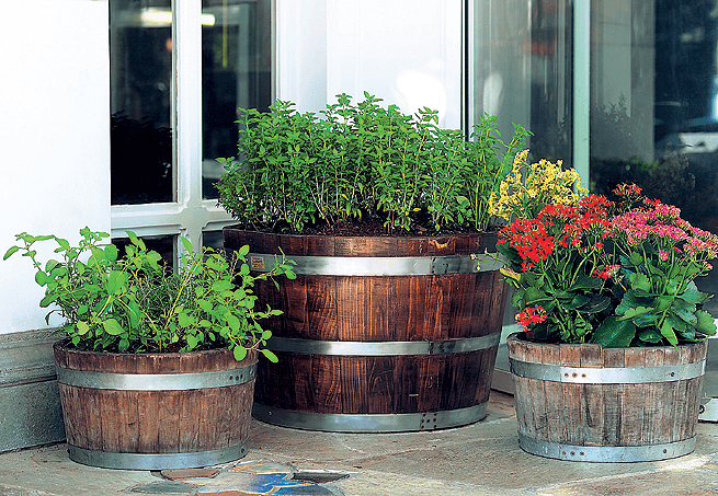 jardinagem vasos decoração
